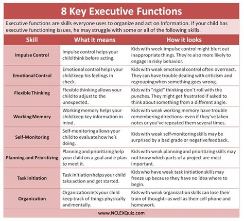 best 25 executive functioning ideas on memory psychology school psychology and