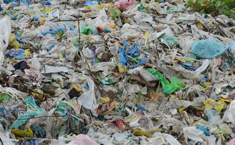 plastic pollution solutions gdiapers