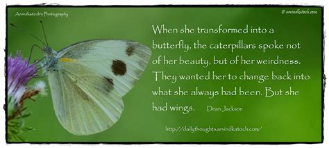 Beautiful Daily Thought With Deep Meaning When She Butterfly Meanings