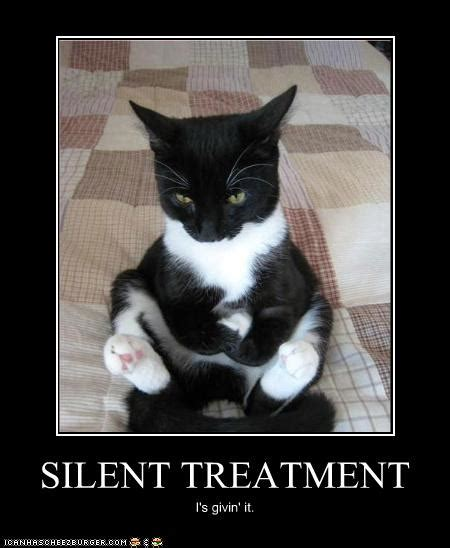 silent treatment quotes like success