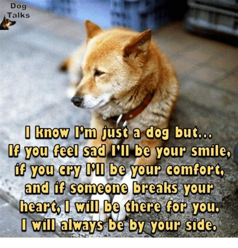 I Ll Be There To And Comfort You by 25 Best Memes About I Will Always Be By Your Side I