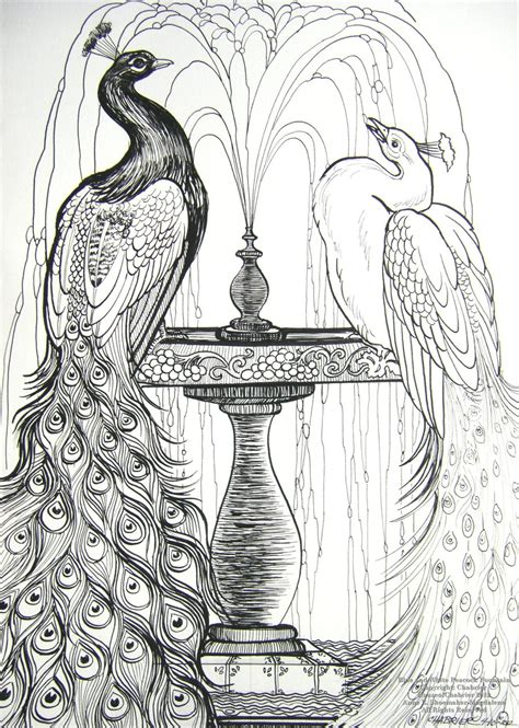 drawing and painting for adults blue and white peacocks by houseofchabrier on deviantart