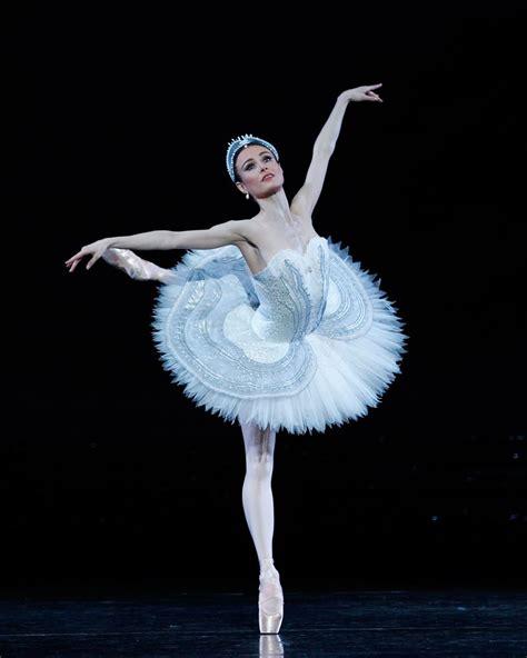 dance of the swans swan lake 2016 the australian ballet stephen baynes