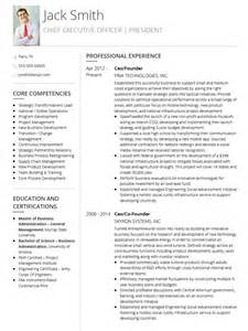 template for a professional cv cv templates professional curriculum vitae templates