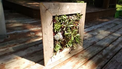 How To Make A Vertical Garden With Succulents How To Build A Vertical Succulent Garden