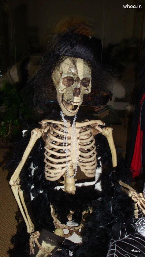 halloween sitting skeleton