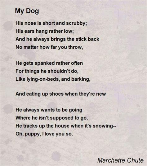 poems about dogs my poem by marchette chute poem