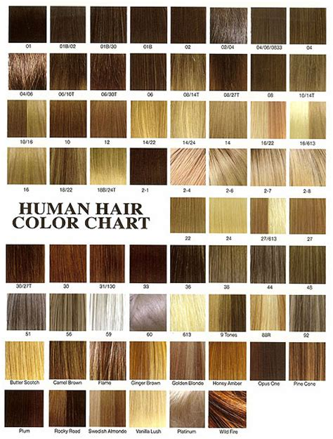 n easy hair color chart n easy hair color chart clairol nice n easy hair color