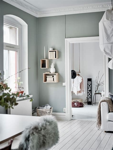grey wall color 25 best wall colors ideas on wall paint
