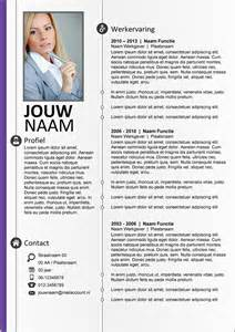Curriculum Vitae Word Template by Cv Word Template 260 On Behance