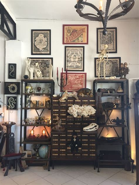 Oddities Home Decor Cabinet Of Curiosities Carmine S Boutique Maybea Curiosities And Oddities Pinterest