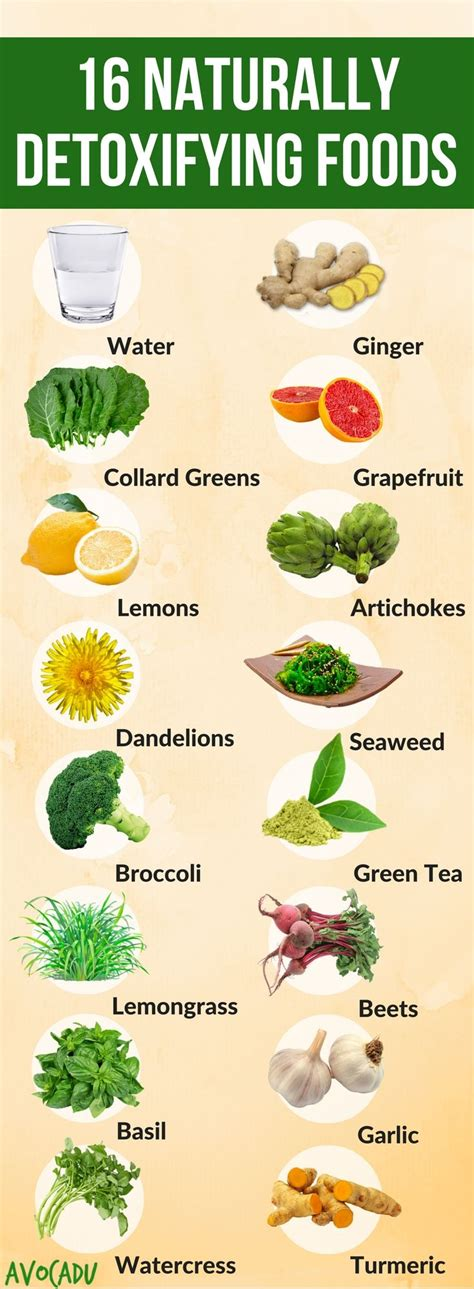 Foods That Help You Detox From by These Healthy Foods Will Help To Naturally Detox The