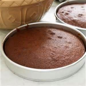 rich chocolate cake recipe easy recipe in 4 simple steps
