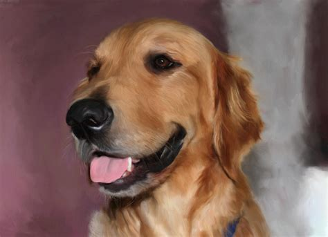 the gallery for gt golden retriever paintings