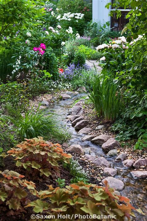 how to build a backyard stream 25 best ideas about backyard stream on pinterest