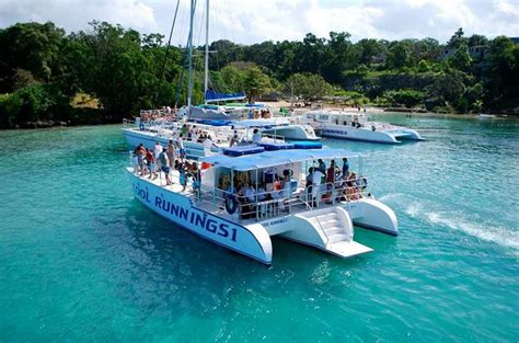 catamaran party cruises irie tours ja we offer the best cruise ship land tours