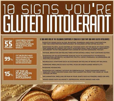 Stool Test For Gluten Intolerance by Glutenfree Gluten Free Grain Free Grainfree Gfree Celiac