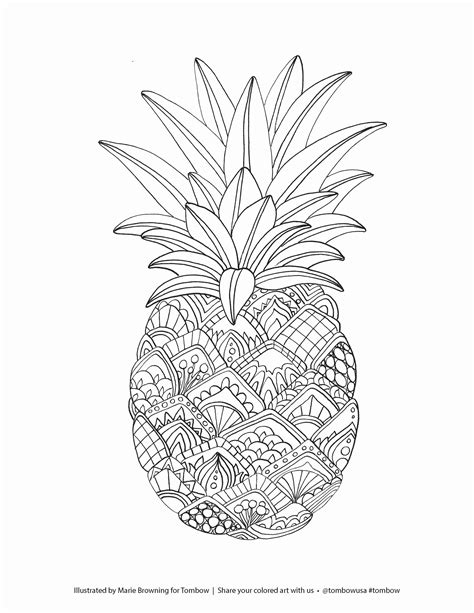 pineapple coloring page fruits coloring pages printable pineapple coloring page