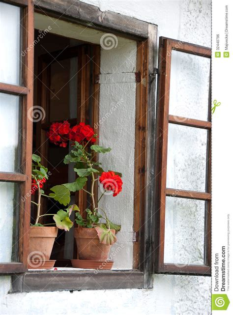 piante da davanzale piante geranio sul davanzale fotografia stock