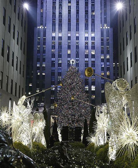 bei 223 en gedanken the 20 most beautiful christmas trees in