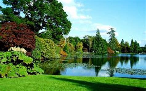 descargar imagenes de jardines gratis los jardines bot 225 nicos descargar fotos gratis