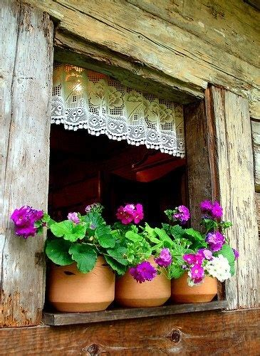 Window Sill Plant Pots Flower Pots On Window Sill Doors Windows