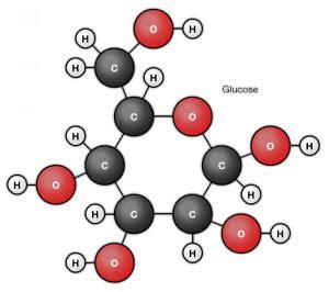 Gula Anggur Glucolin Glukosa pengertian glukosa usaha321 net