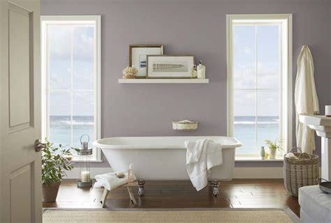 behr color trends  color sample   graylac paint