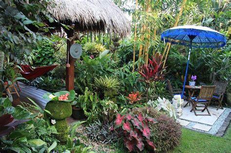 Dannis Sarimbit D Sun Flower dennis hundscheidt s tropical garden best tropical