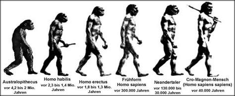 wann lebten die neandertaler evolution des menschen vom urmensch zum sapiens sapiens