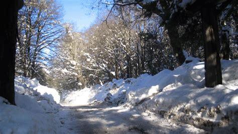 imagenes invierno movimiento gif en movimiento invierno imagui