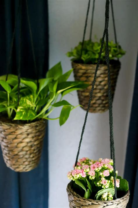 hanging planters diy diy indoor hanging planters love renovations
