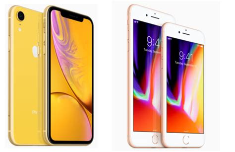 iphone 8 vs iphone xr iphone xr vs iphone 8 apples instapmodel vergeleken