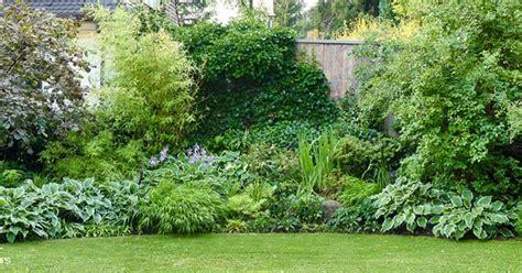 Garten Pflanzen Halbschatten by Geniesser Garten Staudenplanung Halbschatten