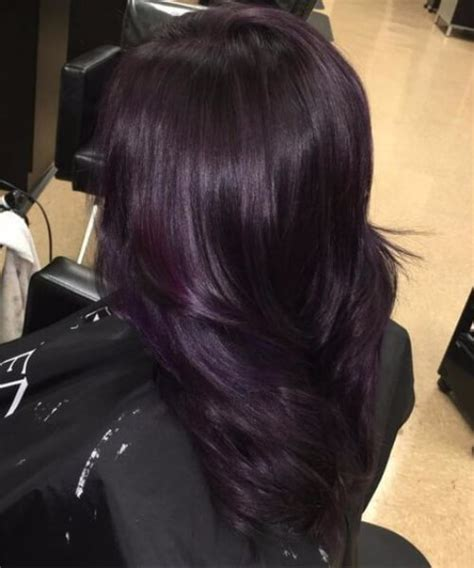 black plum hair color 45 sweet plum hair color ideas my new hairstyles