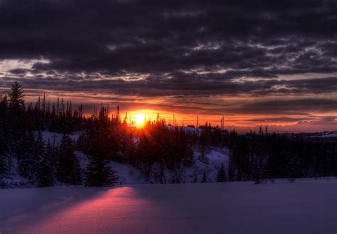 Alaskan Winter Sunset Photograph by Michele Cornelius