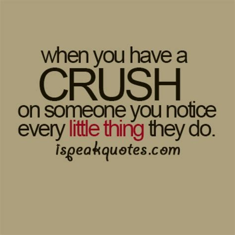 quotes about crushes relatable quotes about crushes quotesgram
