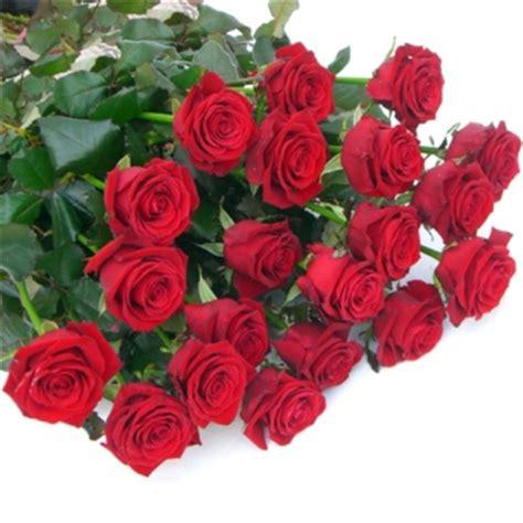 fiori rosse valeria fioreria consegna fiori