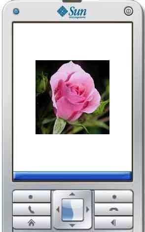 Aneka Manfaat Bunga Untuk Kesehatan Dini Nuris Nuraini Buku Keseh jurnal ti sistem pakar untuk identifikasi bunga yang