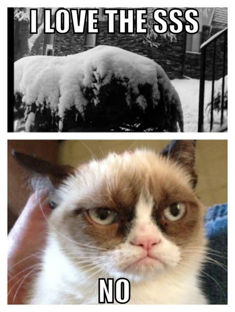 Grumpy Cat Snow Meme - grumpy cat snow memes