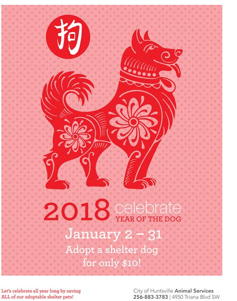 year of the animal shelter celebrates the year of the with 10