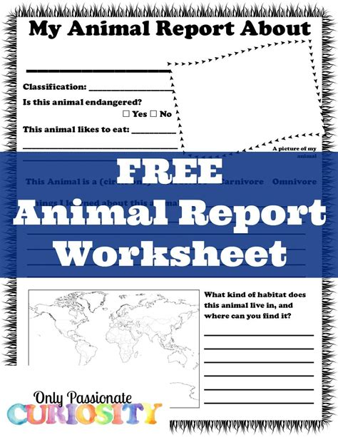 free printable animal report free animal report worksheet only passionate curiosity