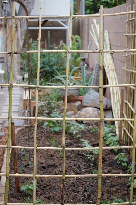 Bamboo Trellis Bamboo Trellis Box Gardens