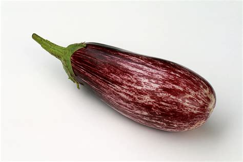 Squishy Licensed Purple Eggplant Original file purple eggplant jpg wikimedia commons