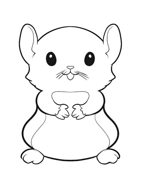 Coloring Page Hamster by Hamster Coloring Pages