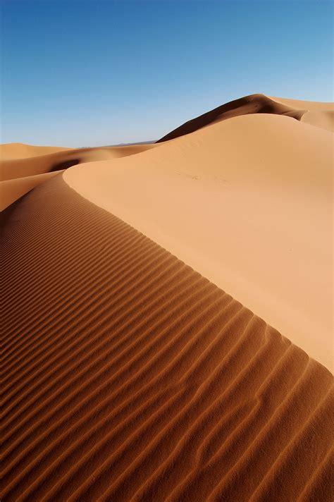 sand dune dune wikipedia