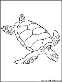 sea turtle coloring page green sea turtle coloring page