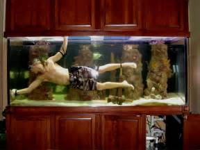 How To Build A Fish Tank Coffee Table Canada Fish Tank 187 Addicted To Aquariums