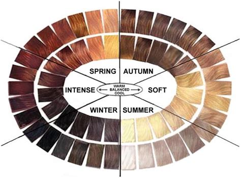 color wheel for hair hair color wheel brown hairs of color wheel hair