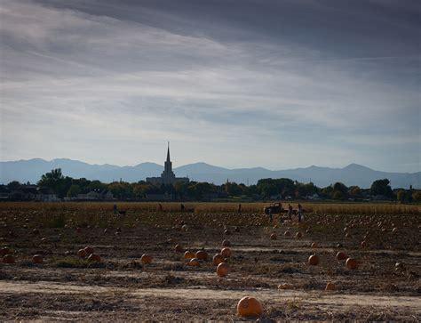 Tshirt Sale Lake City utah your own pumpkin patches funtober